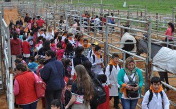 Exposicion Rural Concordia