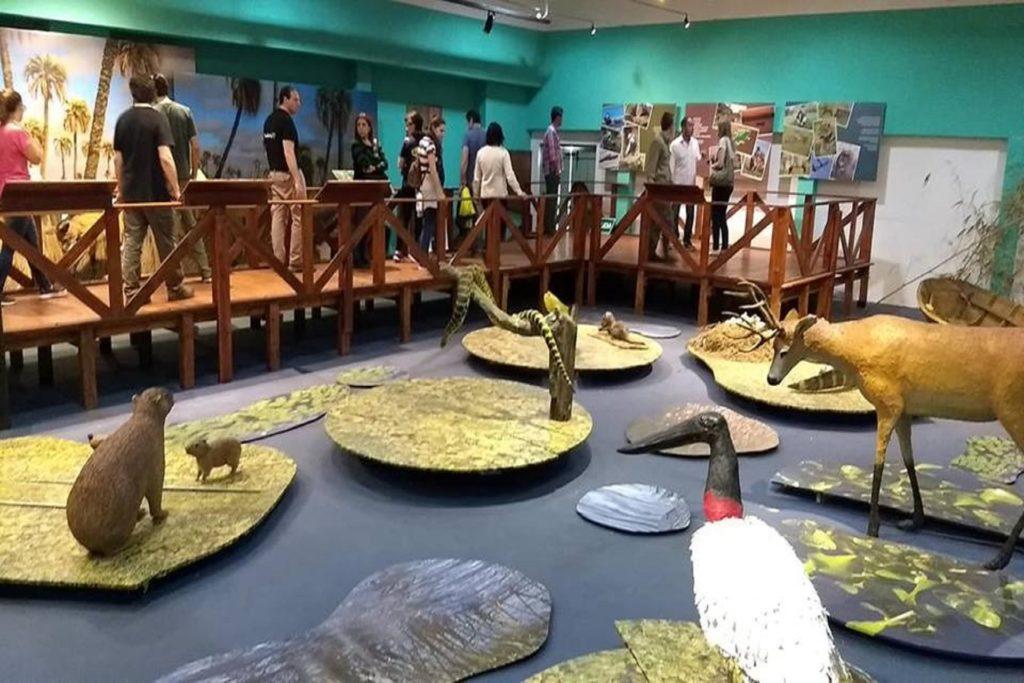 Entre Ríos participó de un encuentro sobre rescate de fauna silvestre